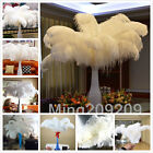 Wholesale 10-100pcs High Quality White OSTRICH FEATHERS 6-28'inch/15-70cm &12