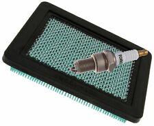 Air Filter & Spark Plug Fits HONDA GC160 GCV135 GCV160 GCV190 Engine