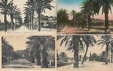 Lot 4 cartes postales anciennes HYERES avenue godillot