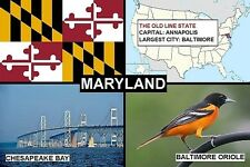 SOUVENIR FRIDGE MAGNET of THE STATE OF MARYLAND USA