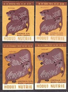 POLAND 1965 Matchbox Label - Cat.Z#577 set, Grow nutrie.