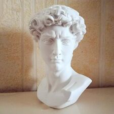 BAO GUANG TA David Head Portraits Bust Gypsum Statue Michelangelo Sketch Practic