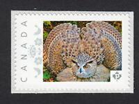 OWL bird Canada Post custom/personalized Postage Stamp MNH 2015 p15/01sn2
