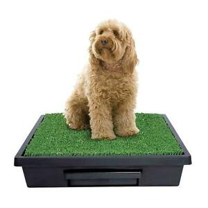 PetSafe Pet Loo Medium Portable Pet Toilet for Dogs - Indoor Use with Grass Pad