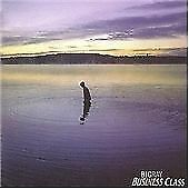 Big Ray-Business Class CD   Excellent