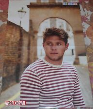Niall Horan / Ron Weasley HARRY POTTER - Magazine A3 Poster