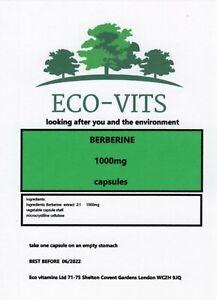 BERBERINE 1000mg 120 caps antibacterial, anti-inflammatory, and immune-enhancing