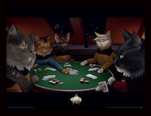Star Trek Cats Poker Framed Official Print New