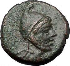 AMISOS in PONTUS MITHRADATES VI the GREAT Time Perseus Pegasus Greek Coin i55443