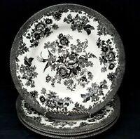 **Royal Stafford** Asiatic Pheasant Black dinner Plates ~ Set of 4 ~