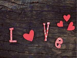 PHOTOGRAPHY COMPOSITION LOVE HEART SHAPES CRACKED WOOD LOG PRINT POSTER MP3405B