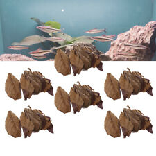 60 Indian Almond Leaves Beneficial Betta Leaf for Shrimp Betta Tropical Fish