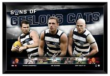 GEELONG CATS FC SONS OF GEELONG FRAMED MEMORABILIA OFFICIAL LICENSED