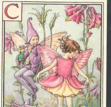 "Fairy Alphabet ""C"" Pink Columbine,Cmb,Barker Postcard"
