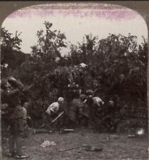 Gun in action, showing gunners with gas protectors - WW1 Stereoview #008