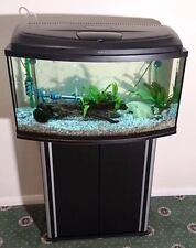 Fresh Water Fish Tank with Stand Aquariums