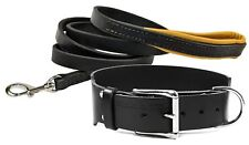"""Dean and Tyler Bundle - One """"B and B"""" Collar Nickel 40x 2"""" With Leash 6 FT Black"""