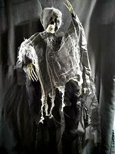 SKELETON Halloween Decoration