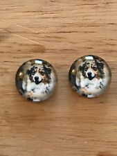 Border Collie Australian Shepherd 12mm Cabochon Earrings