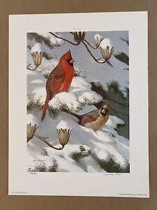 Ned Smith 1985 Winter Cardinals Gallery Proof Print 48/86 Art Song Bird Nature
