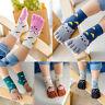 Kids Cartoon Animal Breathable Cotton Compression Comfort 5 Finger Toes Socks