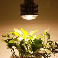 100W 150W COB LED Grow Light Full Spectrum Growth Lamp Hydroponic Indoor Plant