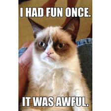 Grumpy Cat POSTER 61x91cm NEW *Tardar Sauce Internet Media Animal