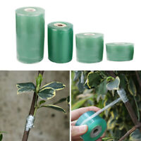 100M/roll Grafting Tape Stretchable Moisture Barrier Self-adhesive Floristry~