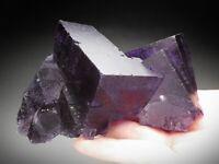 Fluorite Crystals, Denton Mine, Illinois
