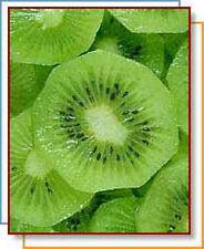 Kiwi Seed Oil- 2oz -
