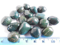 50.8g TUMBLED BLOODSTONE from INDIA  AAA 15-20mm ;Metaphysical; Healing; (#17))