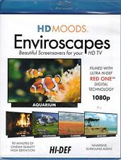 HD MOODS Enviroscapes: VIRTUAL HOLIDAY FIREPLACE, MOUNTAINS, BEACH SCENES & MORE