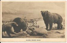 ALASKA BROWN BEAR - FIELD MUSEUM OF NATURAL HISTORY, CHICAGO