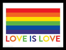 Love is Love Framed 30 x 40 Official Print