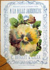 1900 Chicoree/Moka Advertising w/Victorian Diecut Scrap: Large Pansy Flower - 34
