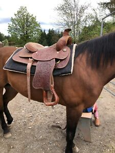 """Vintage Western Roping Saddle, excellent condition 16"""" seat"""