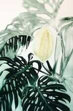 G H Rothe CERIMAN Green Hand Signed ARTwork Limited Edition plant art L@@K