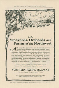 1911 Northern Pacific Railway Ad Vineyards Orchards Farms in Northwest Farming