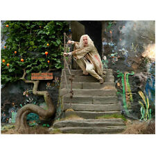 Harry Potter Rhys Ifans As Xenophilius Lovegood On Steps 8 x 10 Inch Photo