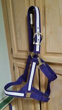 "DRAFT Size Horse Double Ply Purple Halter Silver Hardware 1 1/2"" wide"