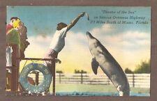VINTAGE POSTCARD UNPOSTED LINEN THEATRE OF THE SEA MIAMI FLORIDA