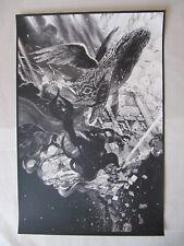 Nicolas Delort Farewell Koholint Legend of Zelda Poster Print Link Nintendo