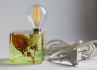 Epoxy resin lamp with cape gooseberry and field flowers