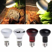 220V 25/50/75/100W UVA Day Night Amphibian Snake Lamp Heat Reptile Bulb Light FR