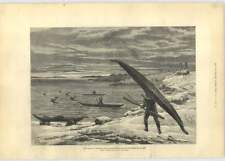 1881 Reindeer Hunting In Kayaks During Franklin Search Expedition