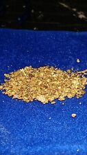 Unsearched River Concentrates 1/2 gram gold added to rich cons. Paydirt!