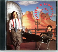 """FOSTER & LLOYD CD:  """"Version Of the Truth""""  1990  RCA  Country  Mint"""