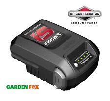 Savers Choice-Briggs & Stratton instart IS Li-Ion Starting Battery 593560 779