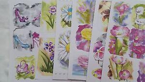 6 x Die Cut Water Colour SHOES & FLOWERS Topper Kit
