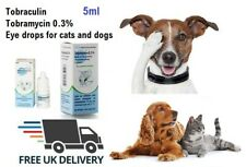Antibacterial eye drops for cats dogs eye infection red tear stains